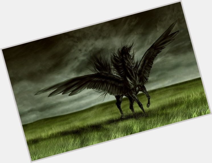 Black Pegasus birthday 2015