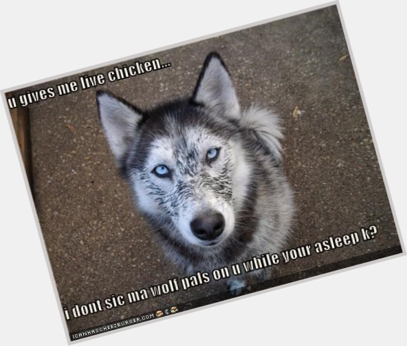 "<a href=""/hot-men/chicken-wolf/where-dating-news-photos"">Chicken Wolf</a>"