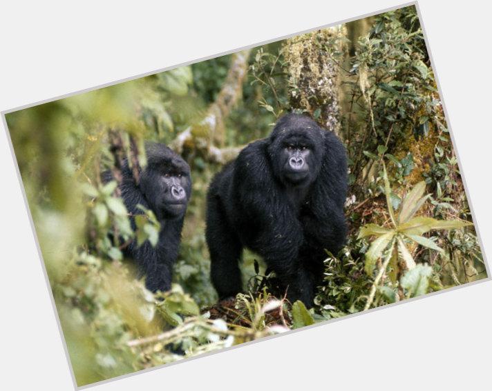 Dian Fossey marriage 4