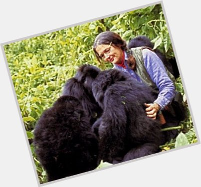 Dian Fossey new pic 1