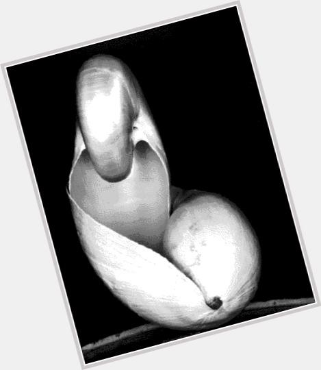 Edward Weston body 8.jpg