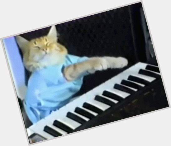 "<a href=""/hot-men/keyboard-cat/where-dating-news-photos"">Keyboard Cat</a> Large body,"