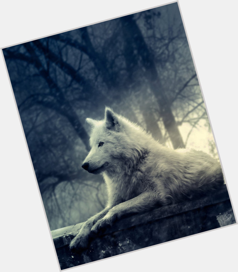 The Wolf new pic 1.jpg